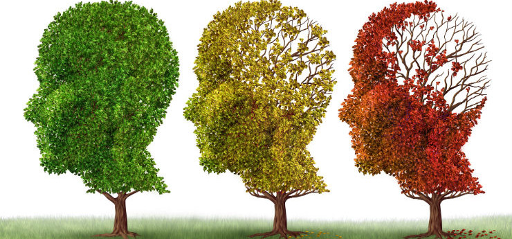 Vitamin D May Contribute to Cognitive Decline