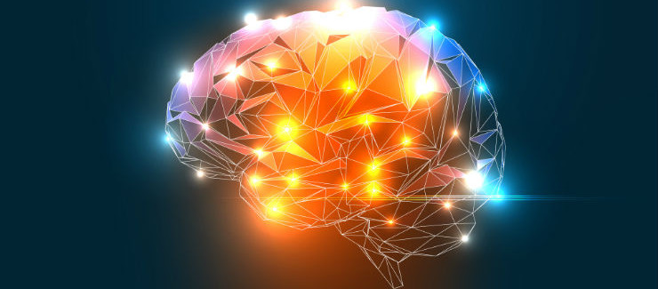itamin D and Omega-3 May Help Decrease Amyloid Plaque Levels in People with Alzheimer's